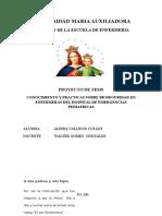 tesis UMA final avance2222 (1).docx