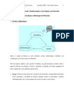 Cap_8 - Erosao e Sedimentacao e Sua Relacao Com Florestas v 2004