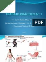 DIAPOSITIVAS TRABAJO PRÁCTICO N° 1 - 2016 - DRA. GARCÍA BUSTOS