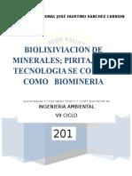 Biolixiviacion de Minerales