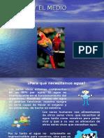 El Agua y El Ambiente 2013