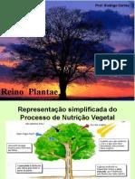 Aula Supletivo Plantae
