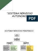 SistemaNervioso Autonomo11
