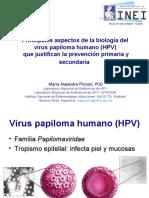 2014-04_03_picconi__principales-aspectos.pdf