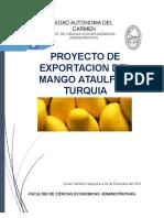 Proyecto de Merca Internacional