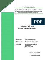 Module01 Sensibilisation أ l'Entreprenariat-Ver-Juillet08-Provisoire-PME-SE