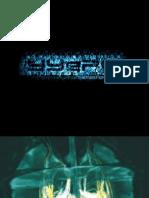 Essential Neurology.pdf