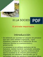 presentaciondearqueologia12345