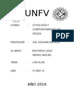 Caratula UNFV (2)