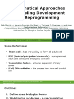 Report on Mathematical Approaches to Stem Cell Pluripotency