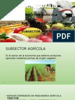 SECTOR AGROPECUARIO (1).ppt