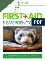 ferret first aid   emergency care  ferret-world