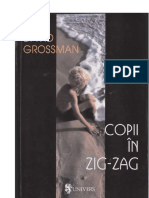 David Grossman - Copii in Zig-zag AC