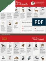 Spirit Animal - Pocket Guide (8,5x11in)