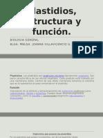 Plastidios, Estructura y Función