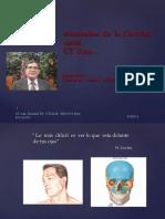 CT  Scan anomalías  cavidad nasal.