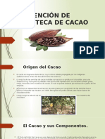 Diapos de Estraccion de Cacao 1