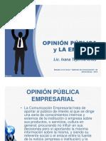19.1 Opinion Publica