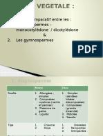 Comparaison Entre Les Angiospermes Et Les Gymnospermes - Www.espace-etudiant.net