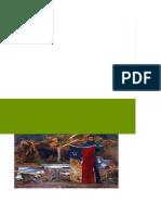 Informe del Terremoto de Chile 2010