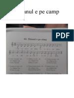 Cantecul Taranul e Pe Camp