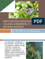 Indicadores Biológicos de Calidad Ambiental o Bioindicadores