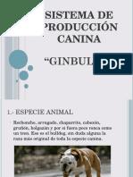 Sistema de Producción Canina Obed