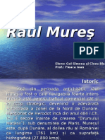 93458840-Raul-Mures.ppt