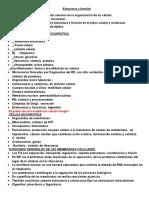 Estructura y función.docx
