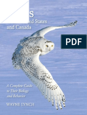 Lesser Spots and Warbling Owls: Collected Nature Writing, Volume 1