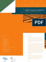 Micro Finanzas en Argentina