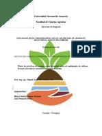 Rendimiento de maíz y mandioca con manejo conservacionista