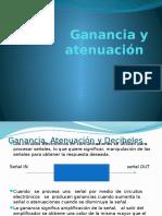 Guanacia y atenuación.pptx