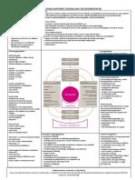 Curriculumraamwerk.pdf