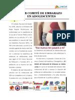 Boletin de Estadisticas de Embarazo en Adolescente 2014