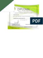 Diploma Cp