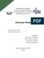 Informe Final Proyectos II