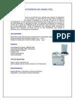 Cromotografia Small 650-2013!12!02-Gases Fid