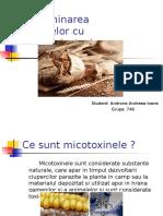 Contaminarea Alimentelor Cu Micotoxine