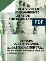 Derecho a Vivir en Un Medio Ambiente Libre de Contaminación
