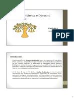 Capitulo I (Medio Ambiente y Derecho Ambiental)
