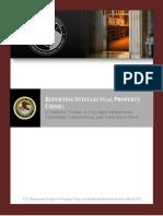 DOJ IP Victim Guide and Checklist March 2013