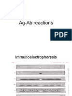 Ag Ab Reactions