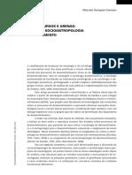 8-ano2-v2n4_artigo_marcelo-sampaio-carneiro.pdf