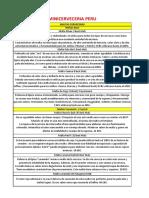 Especificaciones cervezas.pdf