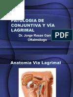 5. Patologia de conjuntiva y vía lagrimal 19.03.15