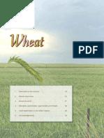 Wheat 06