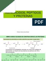 Aminoacidos Peptidos y Proteinas 2013