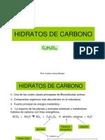 Hidratos de Carbono i 2013