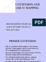 Primer Extension, And Nuclease Mapping